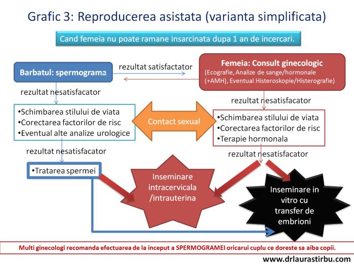 grafic3.png